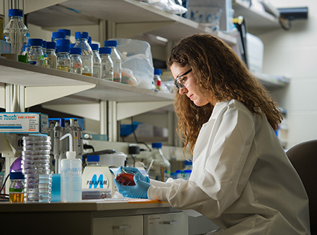 Biochemistry research in the IBMS program