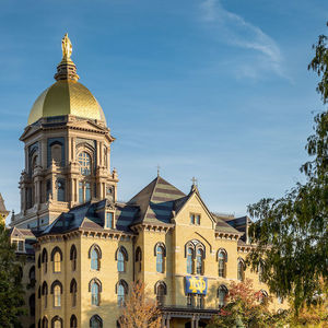 Notre Dame researchers developing renewable energy approach for producing ammonia